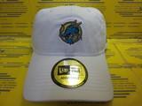 12110801 CAP