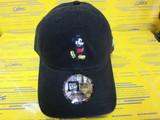 12109045 CAP