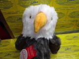 Eagle DR